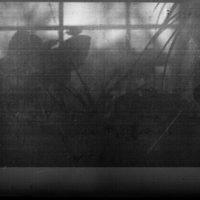 retina image (film )